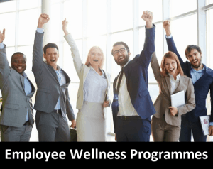 FinanciallyFitLife Employee Wellness